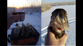 Зимняя рыбалка Ловля ротана со льда