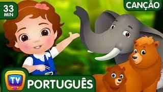 Vamos Todos À Floresta Canção (Coleção) | Canções De Ninar Populares Para Crianças Pela Chuchu Tv