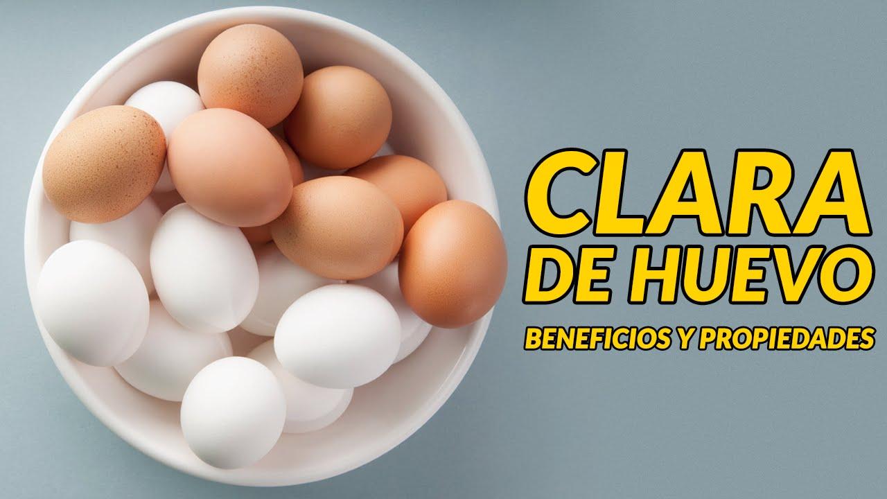 proteinas del huevo clara o yema