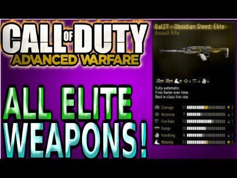 Cod advanced warfare all elite professional enlisted marksman weapon
