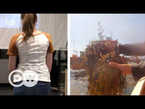 Seaweed fashion | DW English