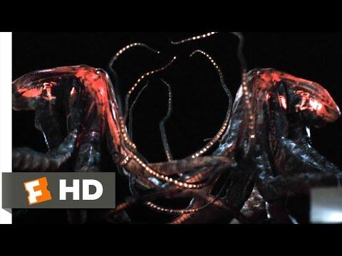 Monsters 1111 Movie   Gentle Giants 2010 HD