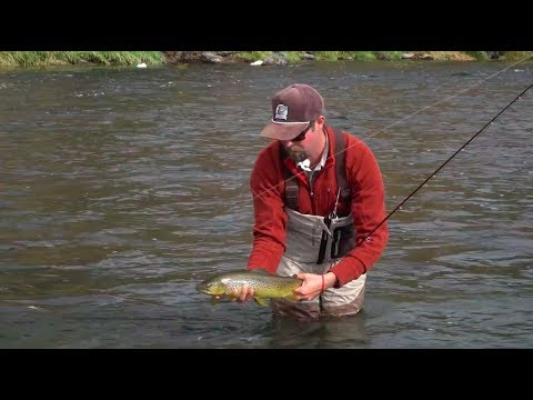 How To Fish a Streamer From the Bank - RIO Products