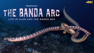 THE BANDA ARC, Life in Alor and the Banda Sea (4k)