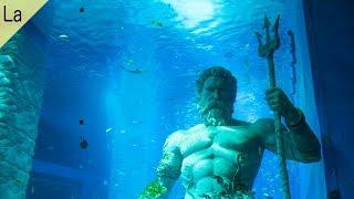 深海に隠された複数の不可解な謎!?