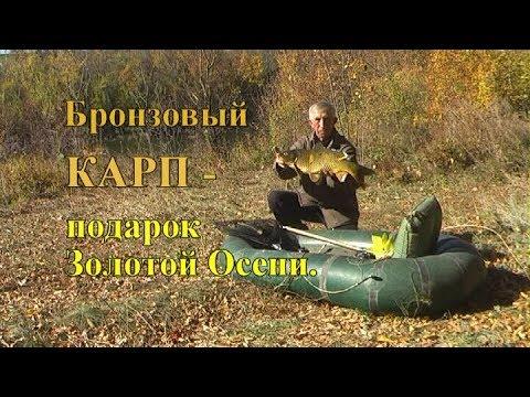 Бронзовый КАРП - подарок Золотой Осени.