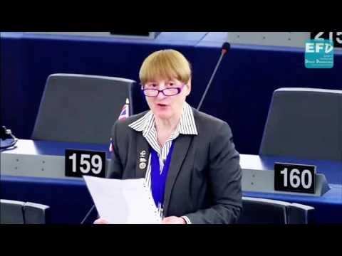 EU 'circular economy' legislation binds only the EU - Julia Reid MEP