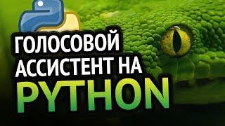 Голосовой ассистент на 🐍 Python | Урок как сделать?