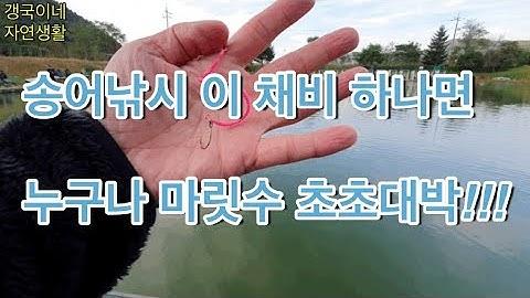 송어 물 낚시 이 채비 꼭 챙겨가세요~남녀노소 마릿수 손맛 징하게 볼수있어요^^낚시터 송어낚시 (가평낚시터)