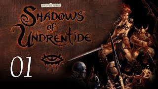 Neverwinter Nights: Shadows of Undrentide - 01 - Introduction