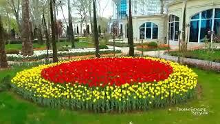 Фантастический город Душанбе