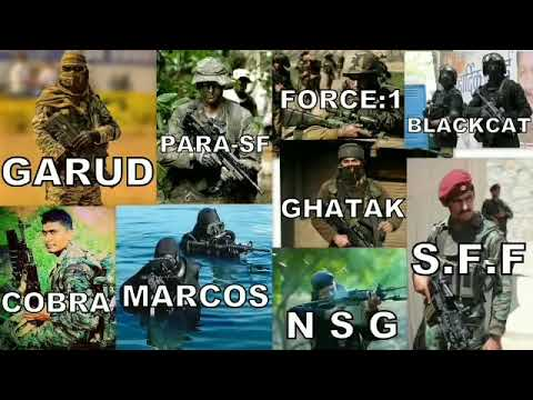 INDIAN SPECIAL FORCES : COMMANDOS 8 Types