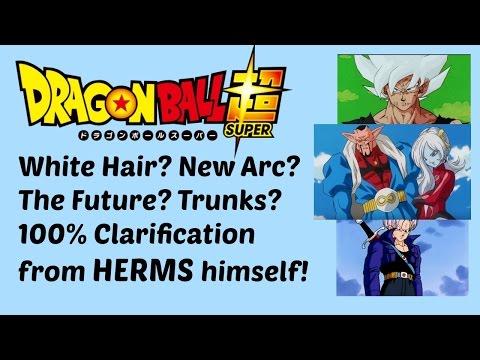 Dragon Ball Super Toriyama Interview Explained: Super Saiyan White? Trunks? New Arc? (w/ HERMS)
