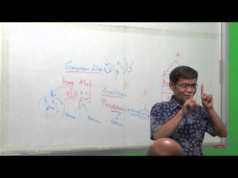 Analitika (Video 1)