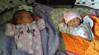 identical twin girls 1 week old