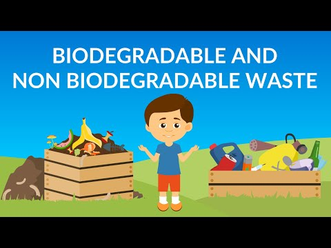 Biodegradable and Non-Biodegradable waste  | Waste Managemen