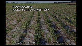 Spudpocalypse: Worst Harvest Ever * Russia Moves Farms Indoors for Grand Solar Minimum thumbnail
