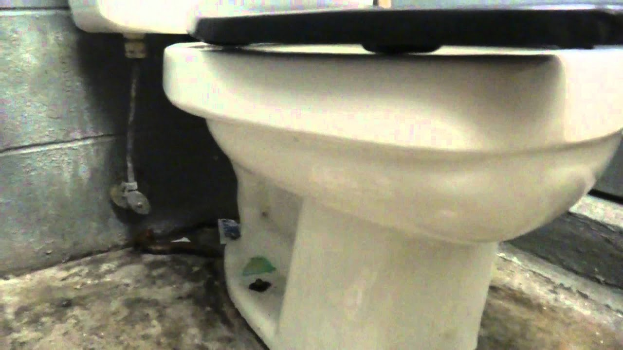 eljer emblem toilet seat.  Eljer Emblem Toilet in Locker room 672 YouTube
