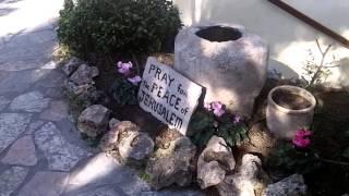Экскурсия по саду гроба Господня.(Израиль., 2016-02-19T22:43:04.000Z)