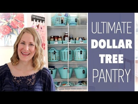 Ultimate Dollar Tree Pantry Organization!