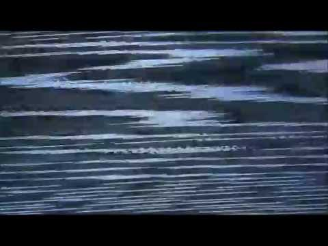 Kytänsoittajat - Sokka irti