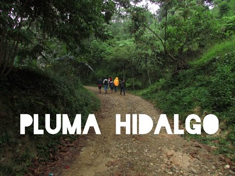 Viaje a Pluma Hidalgo, Oaxaca