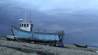 Guillemots - Walk The River