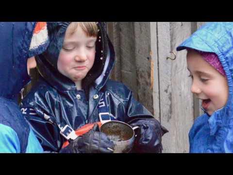 Meadowbrook Waldorf School Early Childhood Program