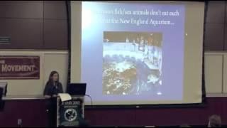 видео Персональный сайт учителя истории - Рецензия на  исследовательскую работу