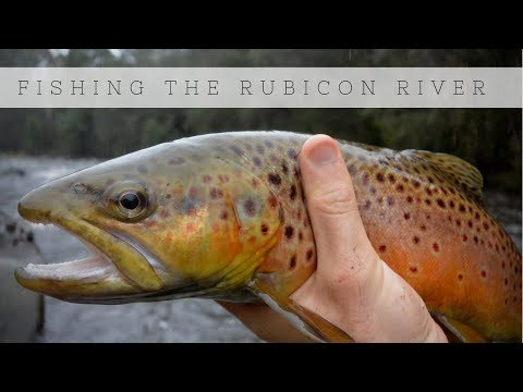 Fishing The Rubicon River For Brook And Brown Trout