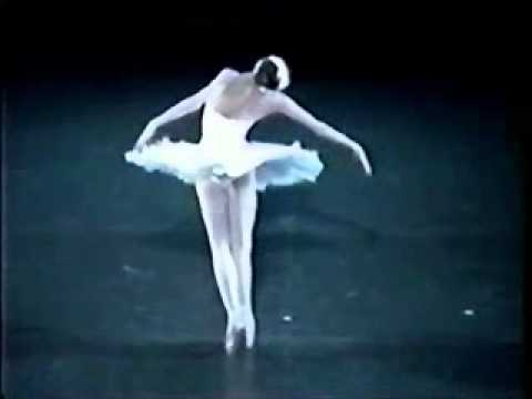 Camille Saint-Saëns: Carnival of Animals - The Dying Swan (Le Cygne) -  Dancer, Svetlana Zakharova