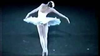 Camille Saint-Saëns: Carnival of Animals - The Dying Swan (Le Cygne) - Dancer, Svetlana Zakharova