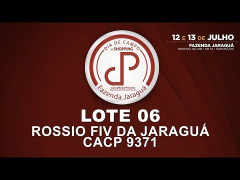LOTE 06 (CACP 9371)