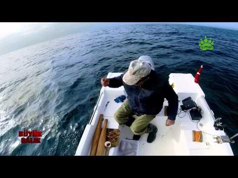 Büyük Balık 1. bölüm