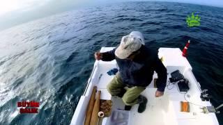 Büyük Balık 1. bölüm - Tanışma