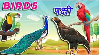 Birds name in hindi | पक्षीयों के नाम | Panchiyon ke naam | Birds Name in English