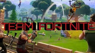 Team Fortnite 02
