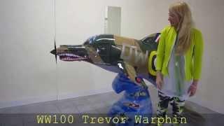 Wild Dolphins Aberdeen - WW100 Trevor Warphin by Mandii Pope