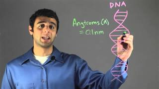Size of the DNA Helix : Biology & DNA