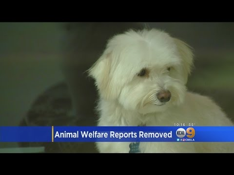 Animal Rights Activists Angered That USDA Has Removed Animal Inspection Reports From Their Site