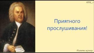 И.С. Бах Концерт для  скрипки и струнных  №1 ля минор Violin Concerto a  BWV 1041 1 Allegro  a-moll