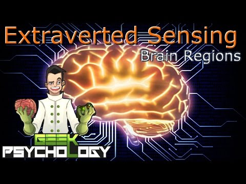 How to Think Like an Extraverted Sensor... Literally
