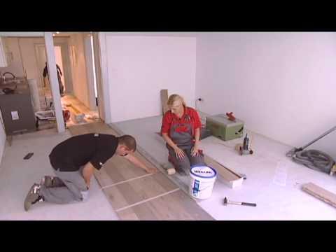 teppich stripper funnydog tv. Black Bedroom Furniture Sets. Home Design Ideas