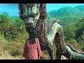 【吐嚎】根据神秘营口坠龙事件改编的电影