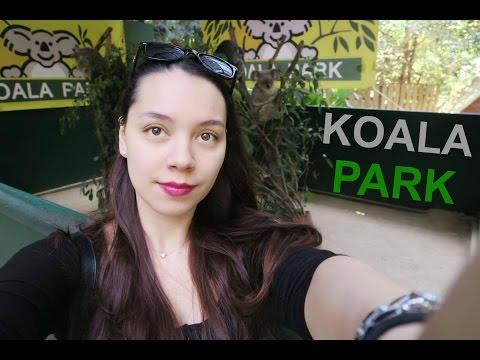 Koala Park With The Family
