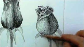 КАК нарисовать РОЗУ карандашом(Полный курс