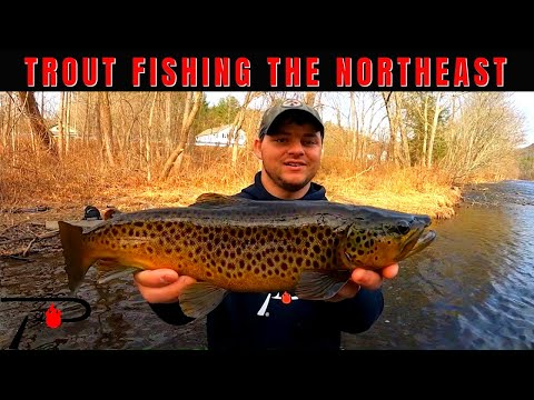 Trout Fishing The Northeast