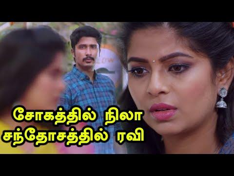 Sun Tv Lakshmi Stores & Nila Serial: வசமாக மாட்டிக்கொண்ட நிலா   காதலை மறைக்கும் ரவி-Filmibeat Tamil