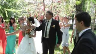 """Свадебный клип """"Краски нашей свадьбы"""""""