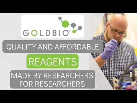 Video poster for Discover Gold Biotechnology